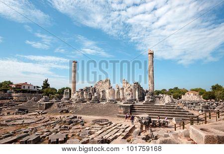 General View Temple Apollo Didim