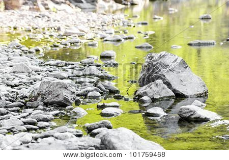 Glimpse Of A River With Green Reflections