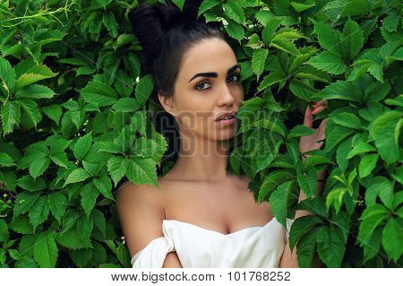 seductive woman with luxurious hairstyle in green leaves