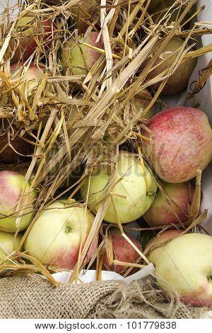 Fresh Apples In A Box
