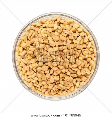 Organic Fenugreek in bowl top view.