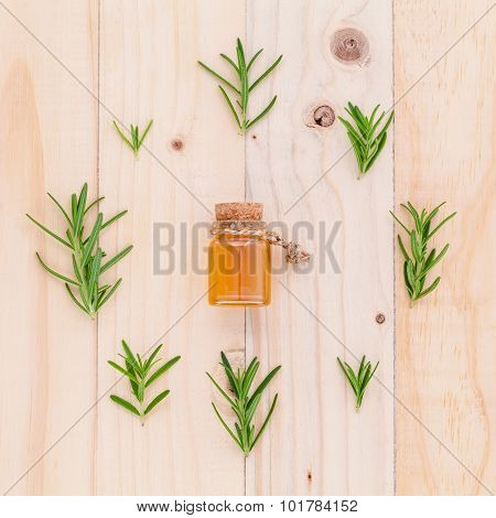 Natural Spa Ingredients Rosemary Essential Oil For Aromatherapy With Circle Of Rosemary  Leaf On Woo