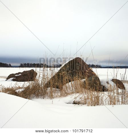 northen landscape, Baltic sea in winter, near the town of Vyborg, Russia