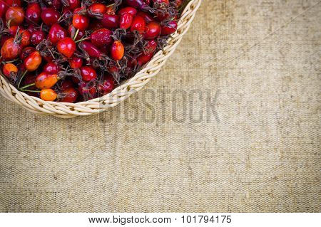 Linen background with a dried dogrose