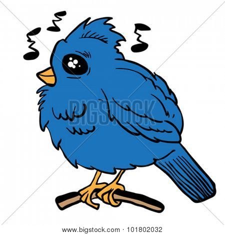 funny looking bird cartoon illustration
