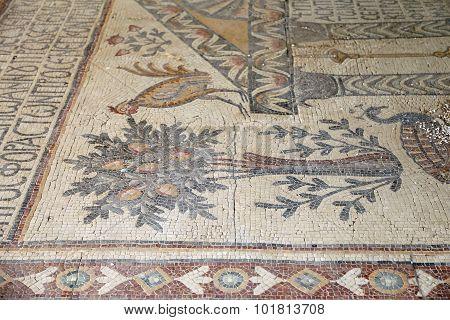 Ornate Floor Mosaics At The Basilica Of Moses), Mount Nebo, Jordan