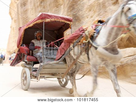 Tourist transport (carriage) in Petra Jordan