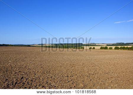 Scenic Cultivated Field