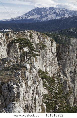 Canyon Of River Tara, Montenegro