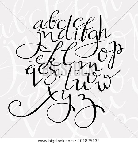 flourish script vector alphabet