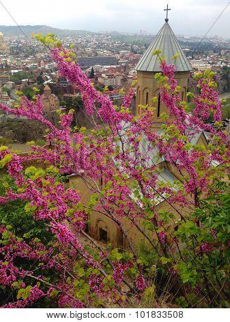 Narikala, Tbilisi, Georgia