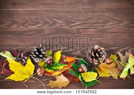 Autumnal leaves with pinecone and acorn on wooden board
