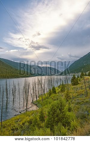Landscape Of Earthquake Lake, Montana.