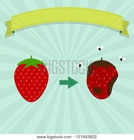 Rotten Strawberry