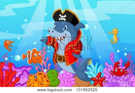 Cute shark pirate cartoon with collection fish