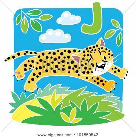 Little cheetah or jaguar. Alphabet J