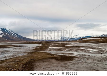 Arctic Tundra In Early Summer Mud, Svalbard