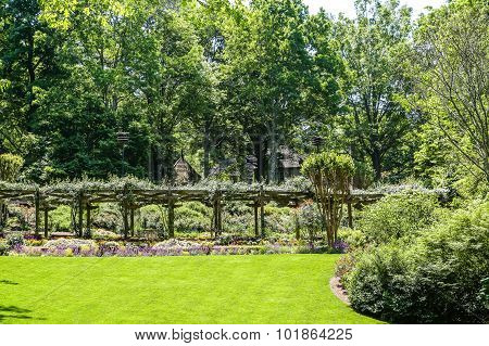 Rose Arbor Over Green Grass