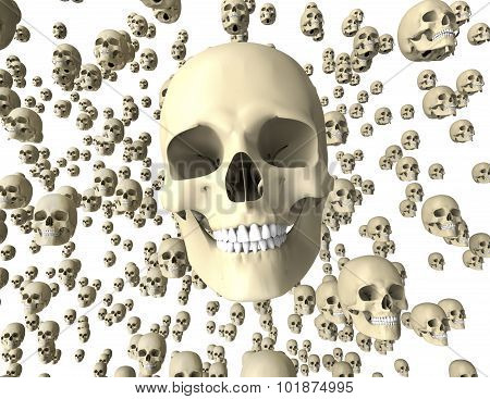 Withe Scull Isolated On Dark Background With Clipping Path