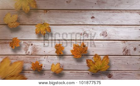 Autumn leaves pattern against digitally generated grey wooden planks