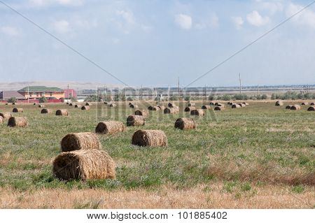 haystack in the field, summer day