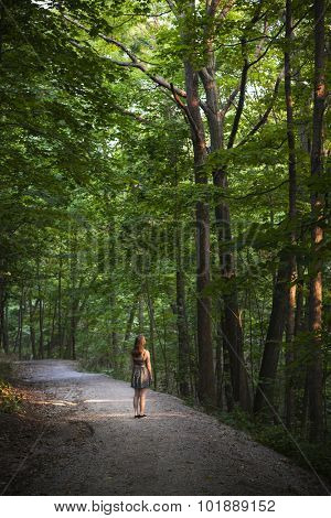 Small figure of young woman standing on path in dark forest with big tall trees illuminated by evening sunshine