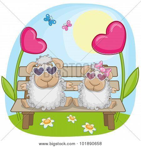 Lovers Sheep