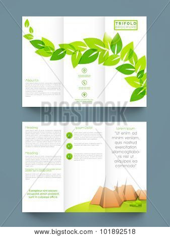Stylish Nature Trifold, Brochure, Banner or Template design with fresh green leaves.