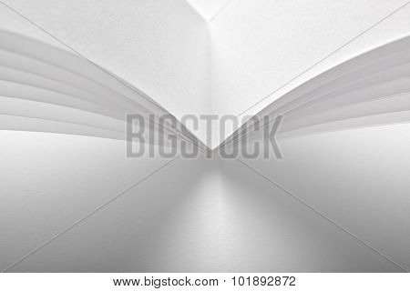 White Paper Abstract