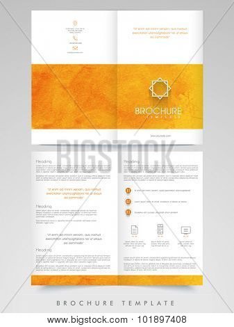 Creative professional Brochure, Template or Flyer presentation for your Business or Corporate Sector.