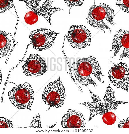 Abstract seamless pattern with Physalis, hand-drawn illustration.
