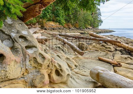 Rocky beach and ocean scenic for vacations and summer getaways. Sandwell Park Trail at Gabriola Island, BC, Canada.