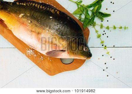 Raw Fish (tench?) With Basil On A Wooden Cutting Board, Top View