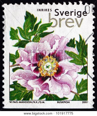 Postage Stamp Sweden 2001 Tree Peony