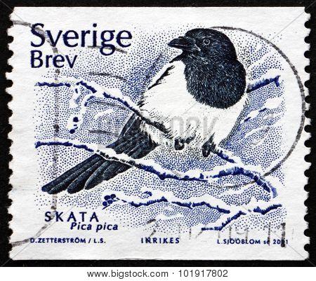 Postage Stamp Sweden 2001 European Magpie