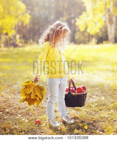 Little Girl Child With Yellow Maple Leafs And Basket With Apple In Autumn Day