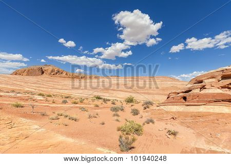Sandstone Formation In The Valley Of Fire State Park, Usa.