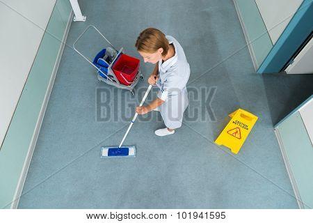 Janitor Cleaning Floor Of Corridor Pass