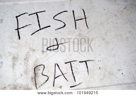 Fish and Bait Cooler Lid