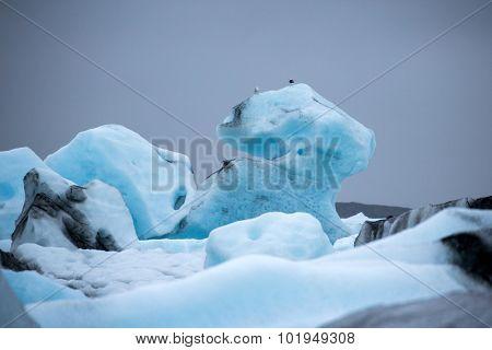 Glacier melting down at the Jokulsarlon Glacier Lagoon, Iceland