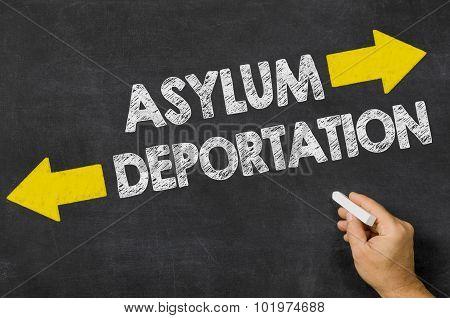 Asylum Or Deportation
