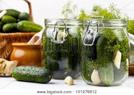 Homemade Pickles In Brine With Garlic, Dill And Horseradish