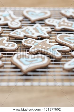 Variety of gingerbread cookies fresh from the oven - selective focus
