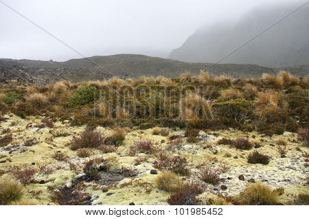 New Zealand - Tongariro Trail