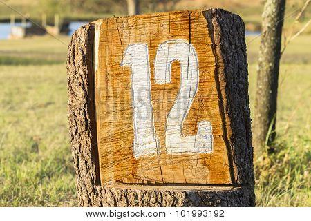 Sign Number Twelve 12