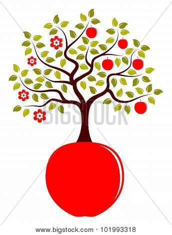 Apple Tree Growing From Apple