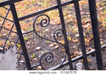 Iron Fence With Fallen Leaves In The Background