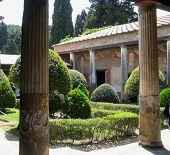 Garden In Pompei