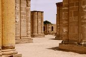 pic of jericho  - Ornate columns standing erect where Hisham - JPG