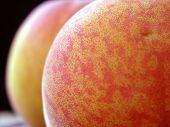 Juicy Summer Peaches Lb4014 poster